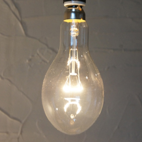 E26 100W 集魚灯型ランプ (白熱電球)※電球のみ