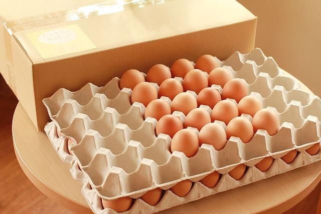 永光農園の平飼い有精卵 60個入り