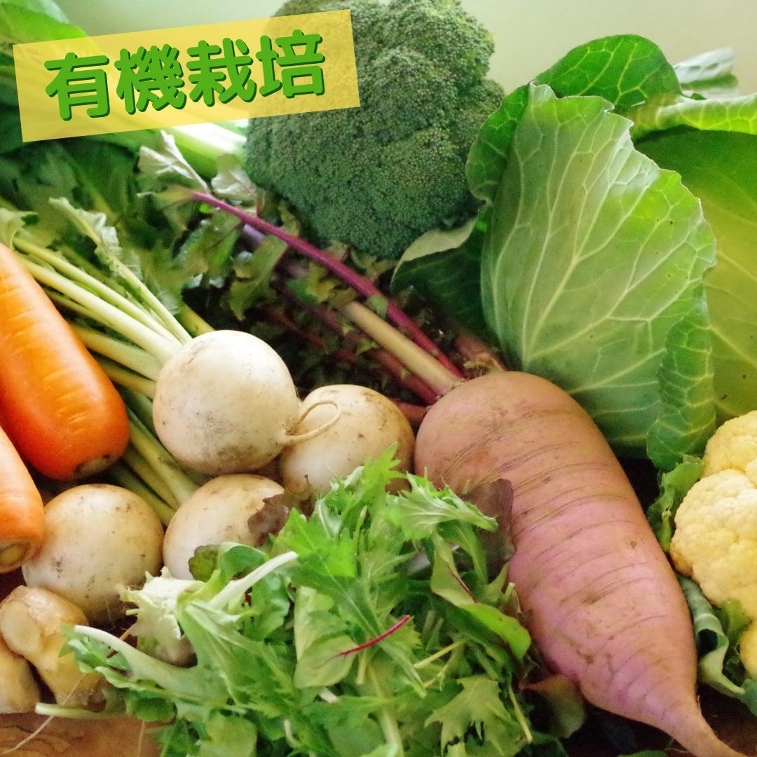 有機野菜10~12品の「おまかせセット」