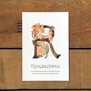 ポストカード「キンセンカ@RINGBLOMMA(王子たちの花文字 - 18)」