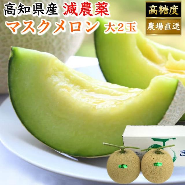 高知県産 マスクメロン 大玉(約1,5kg×2) お取り寄せ ギフト フルーツ 果物 送料無料