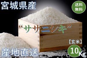 宮城県産【ササニシキ】玄米 10Kg/袋【送料無料】