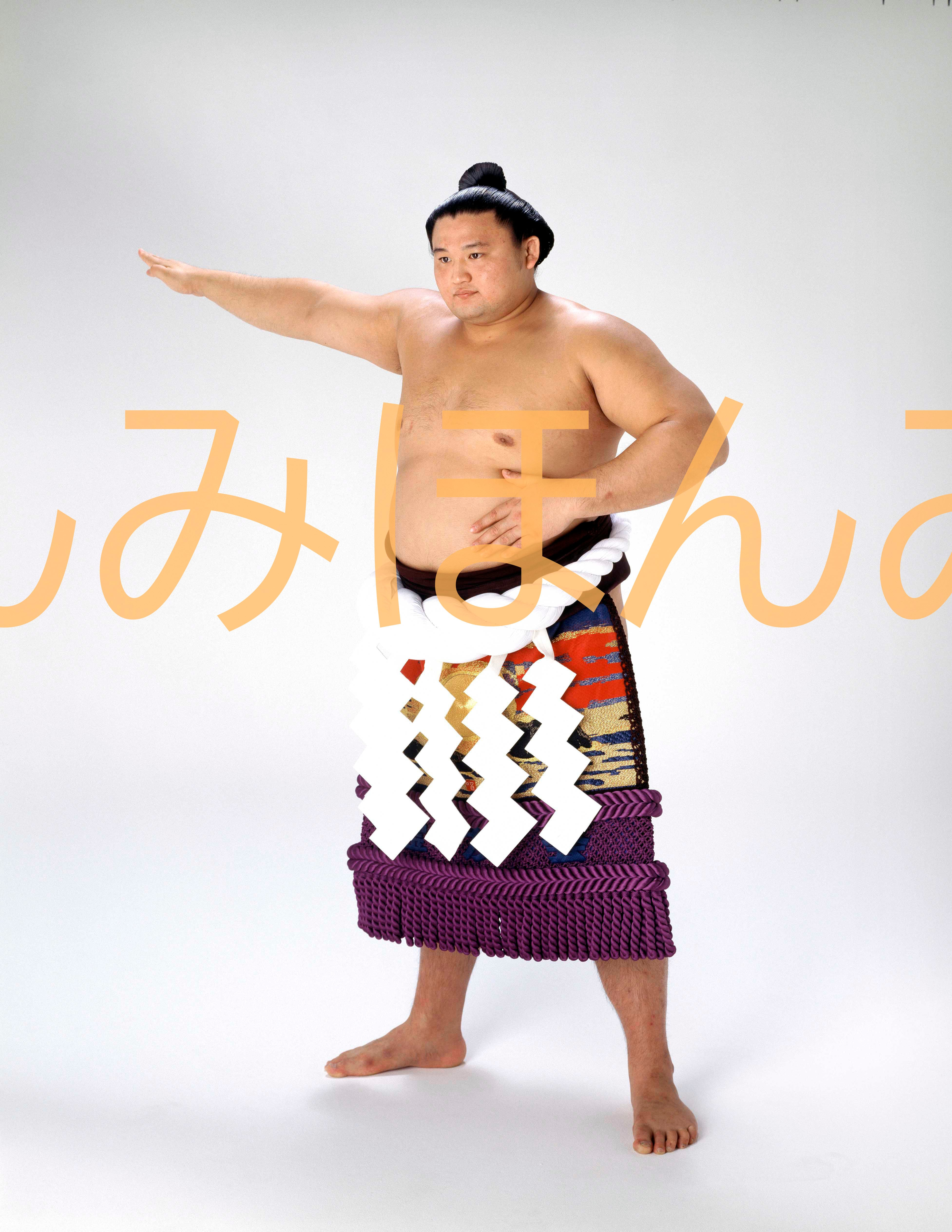 平成7年9月場所全勝 横綱 貴乃花光司関(11回目の優勝)