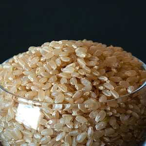 門崎 ホタル米 2kg 玄米