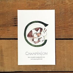 ポストカード「マッシュルーム@CHAMPINJON(王子たちの花文字 - 3)」