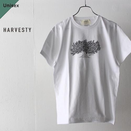 HARVESTY プリントTee TREE A51908