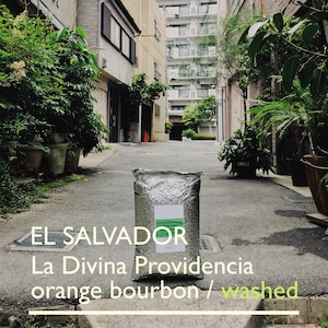 EL SALVADOR [o.b] -中浅煎- 100g