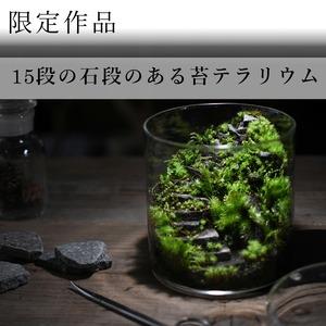 苔景−15段の石段 −【苔テラリウム・現物限定販売】