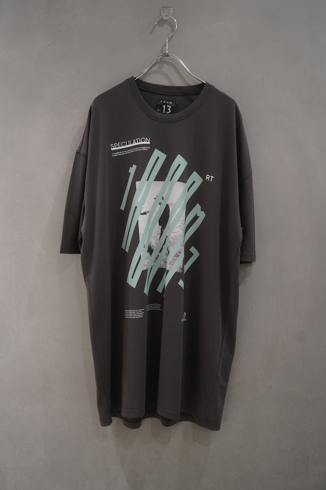 room13  Graphic T-Shirt human  gry