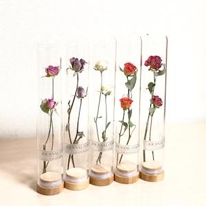 ガラスボトルinドライフラワー 薔薇
