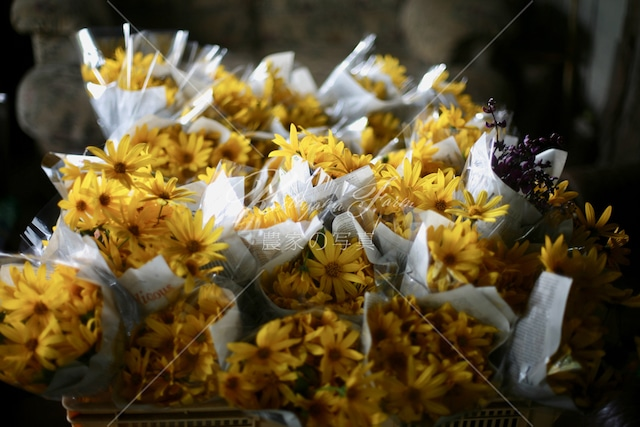 195 菊芋の花束「食用花」