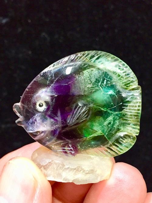 9) フローライト「熱帯魚」