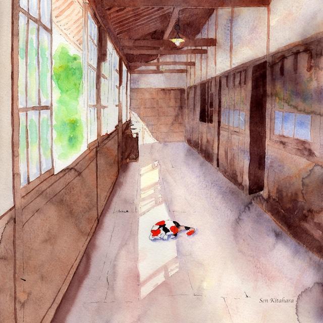 絵画 絵 ピクチャー 縁起画 モダン シェアハウス アートパネル アート art 14cm×14cm 一人暮らし 送料無料 インテリア 雑貨 壁掛け 置物 おしゃれ 水彩画 創作 猫 ネコ ねこ 動物 ロココロ 画家 : 北原 千 作品 : 廊下と猫