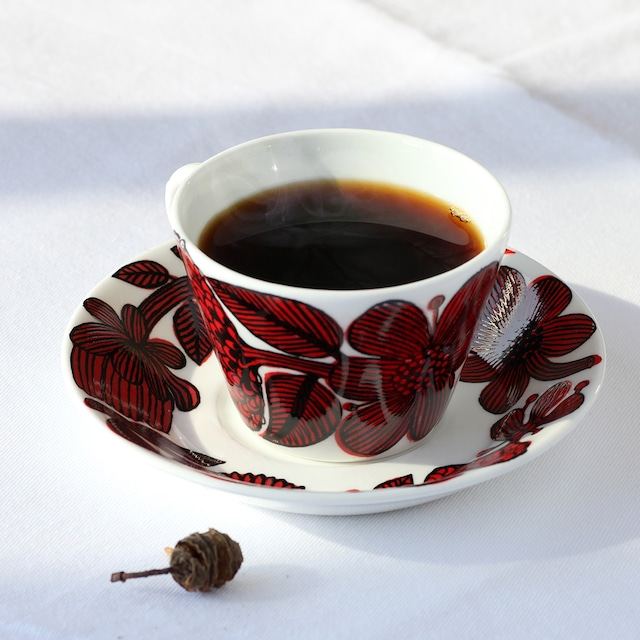 Gustavsberg グスタフスベリ Red Aster レッド・アスター コーヒーカップ&ソーサー -1-4 北欧ヴィンテージ