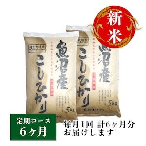 【定期コース】魚沼産コシヒカリ 10kg(5kg×2袋) 6ヶ月