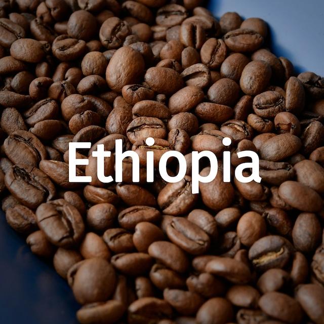 エチオピア イルガチェフェ 200g