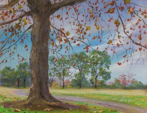 NO.39「プラタナスの赤い葉・11月」