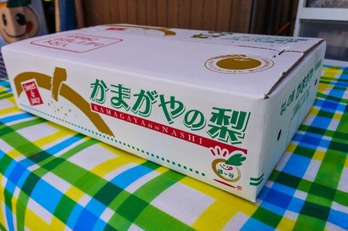 【大玉】豊水7~8個入り(3kg)