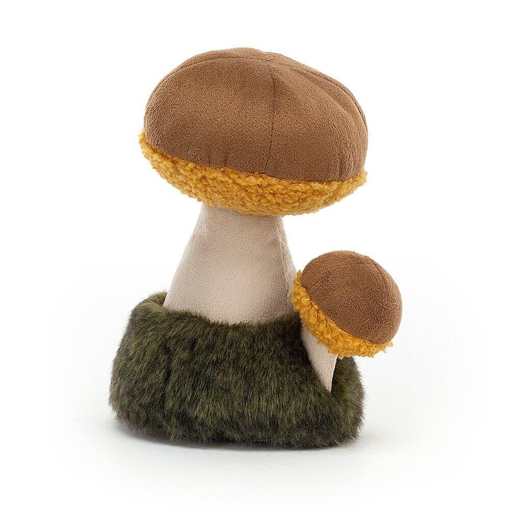Wild Nature Boletus Mushroom_WN2B