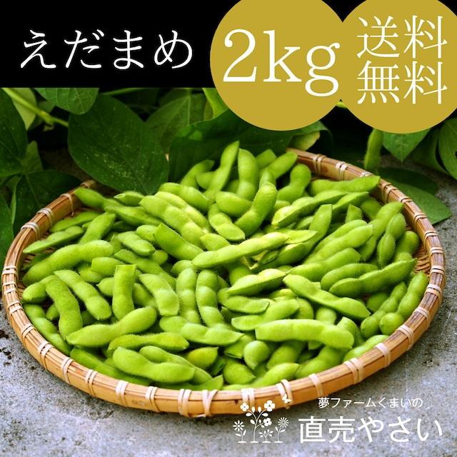 美味しい 枝豆 2kg 送料無料 朝採り