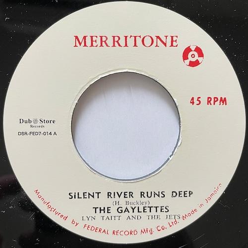 Gaylettes, Lynn Taitt, Jets - Silent River Runs Deep【7-20711】