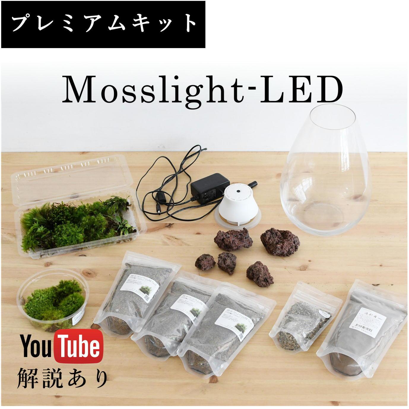 【プレミアムキット】Mosslight-LEDで作る苔テラリウム ◆動画解説付き