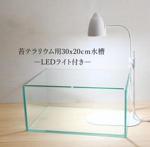 【ガラス容器】 苔テラリウム用 30x20cm水槽  ◆LEDライトset