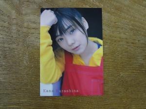 倉科カナ 付録カード 2008 双葉社 Girls