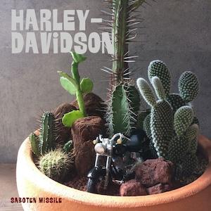 Harley Davidson【FAT BOY FLSTF】