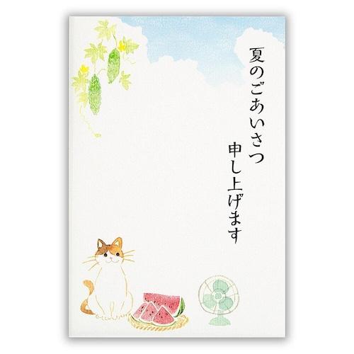 猫葉書(夏のご挨拶はがき)夏空