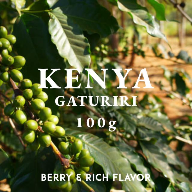 KENYA|NYERI  GATURIRI FACTORY|中深煎り|コーヒー豆