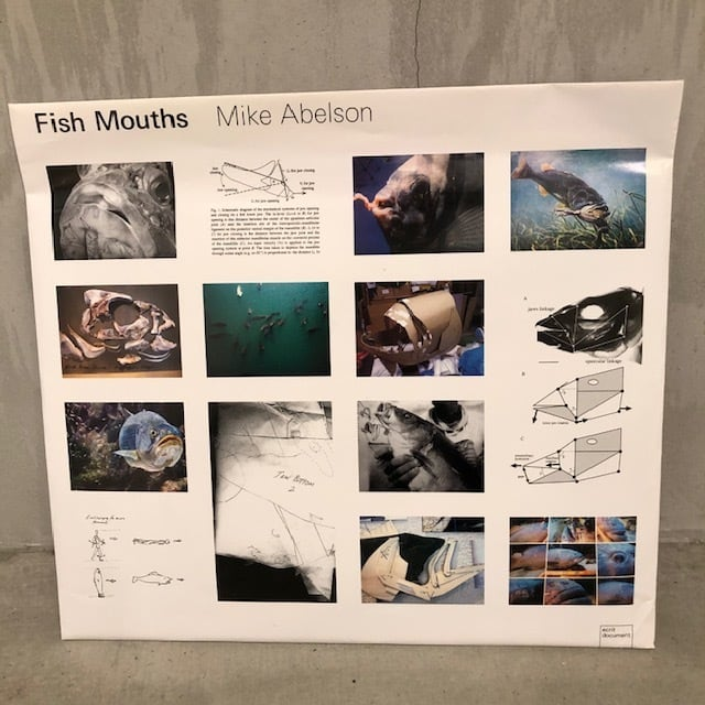 BOOK / Mike Abelson 『Fish Mouths』
