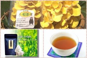 熊本県産あさぎり町「花咲たもぎ茸茶」ティーバッグ(ほうじ茶)【送料無料】