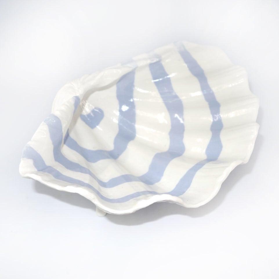 シャコ貝(白色縞模様)T-6