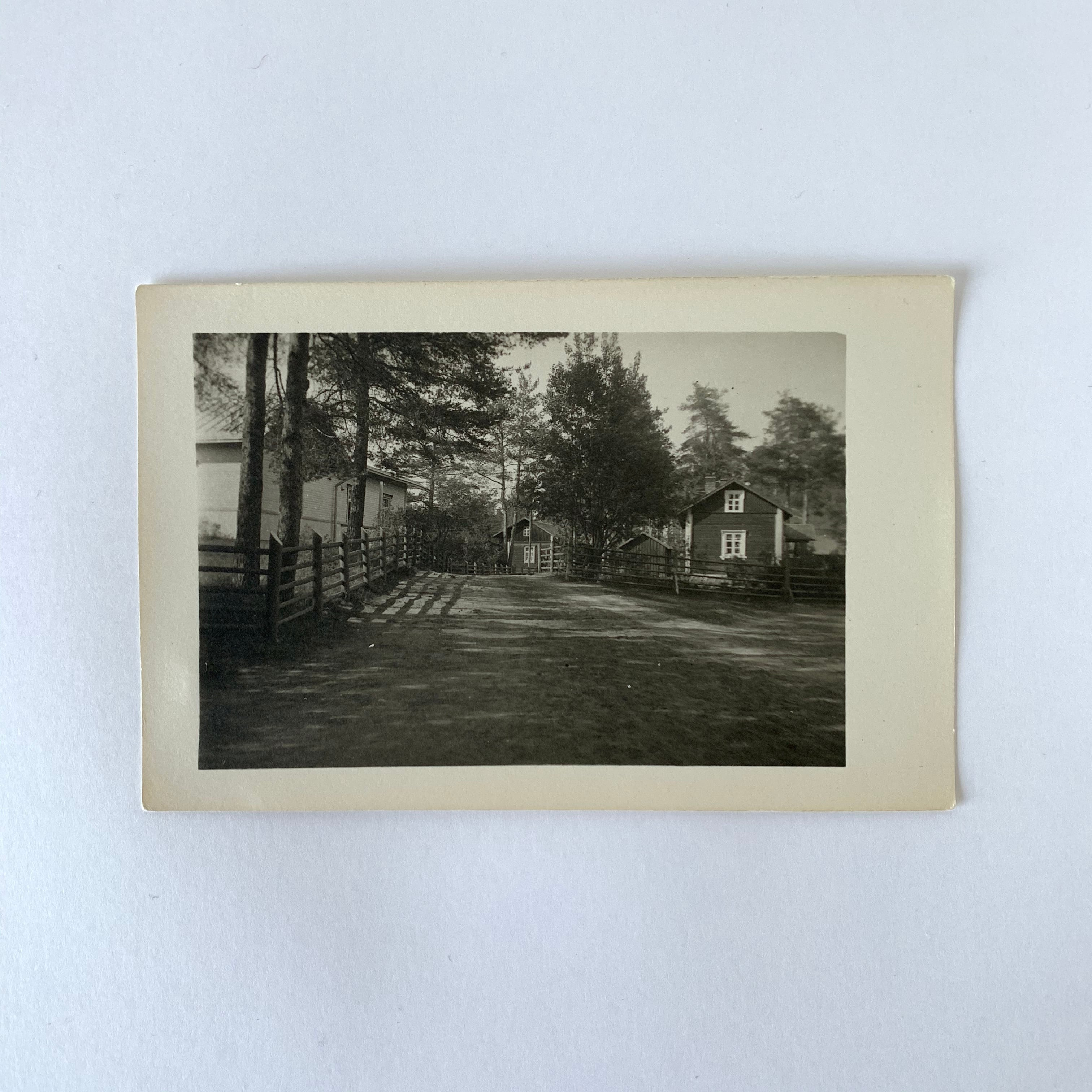 Antique Postcard No.022