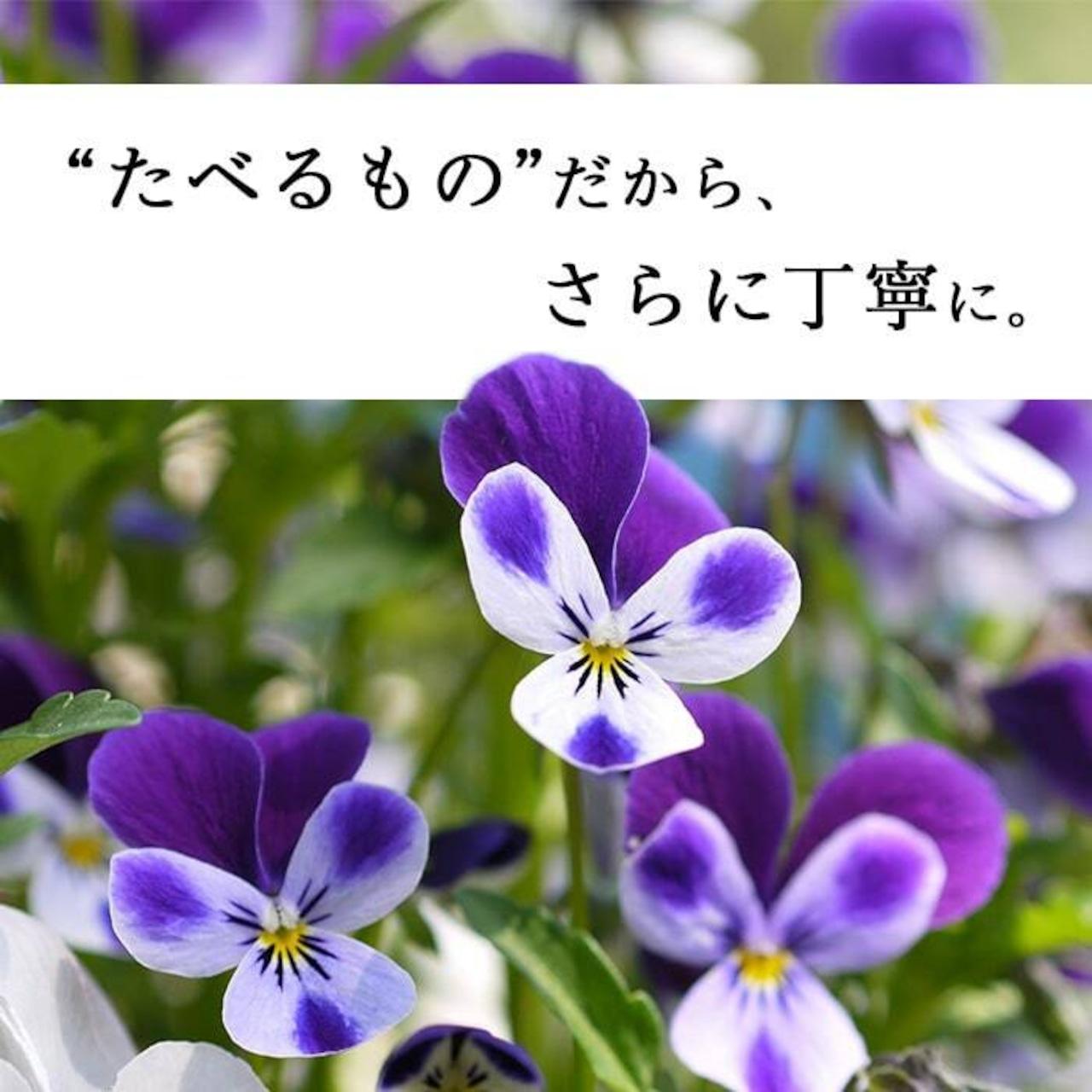 【87farm】食べられる押し花 10枚入(アリッサム ミックス)