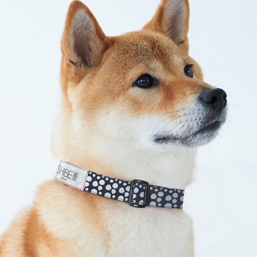 COLLAR PAW DOT【BLACK】犬用首輪