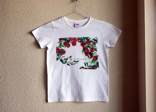 コットン100 Tシャツ 小鳥とりんご