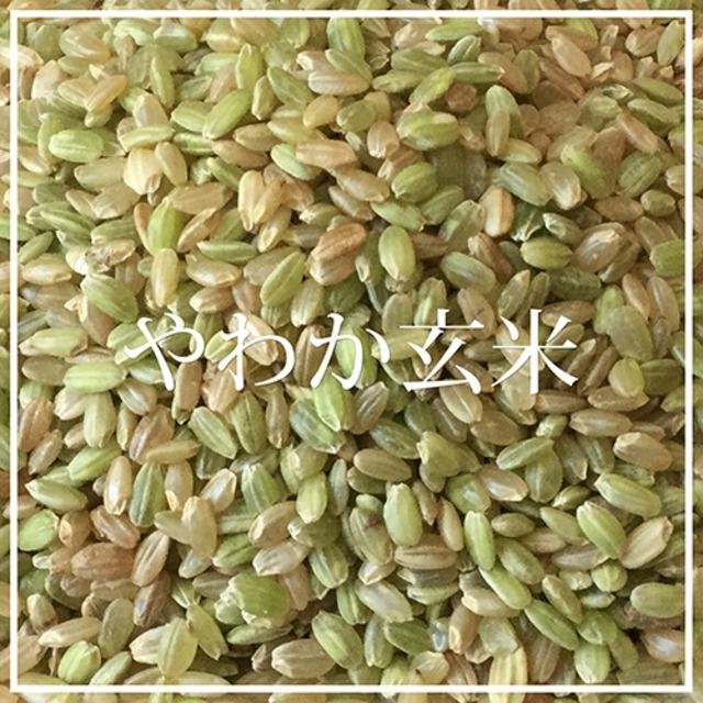 無農薬 やわか玄米 1kg