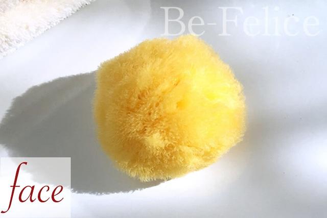 ベリーニ シースポンジ(天然海綿) シルク種Sサイズ 4~5㎝(FD5)