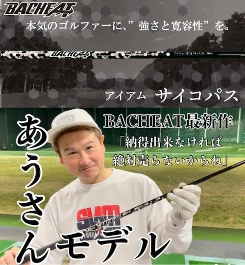 【スリーブ/グリップ無】RATEL(ラーテル)ゴルフ シャフト BACHEAT アイアムサイコパス
