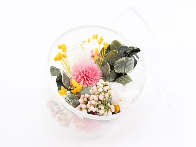 hikkaアロマブルーム ハーフポットS グリーン(OFF)【アロマオイル付セット】