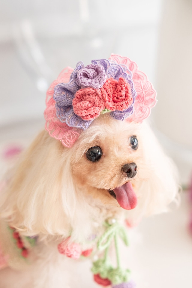 【予約】Pet a Portre La Coiffe de Rose ラ・コイフ・ドゥ・ローズ