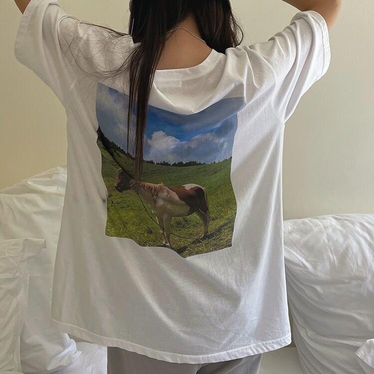 Pony photo T-shirt(ポニーフォトTシャツ)b-298