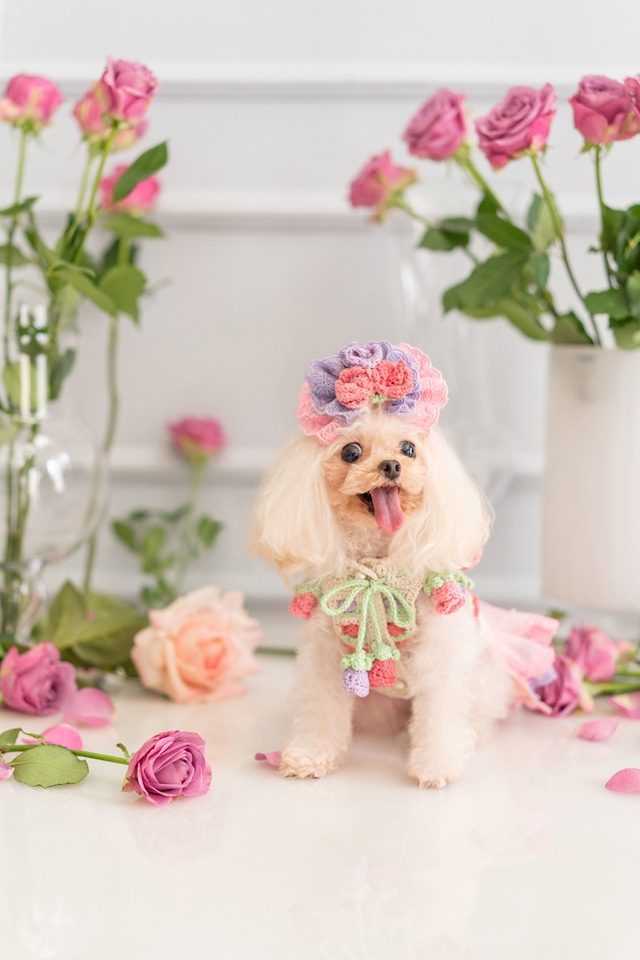 【予約】Pet a Portre Bouton de Rose ブートン・ドゥ・ローズ