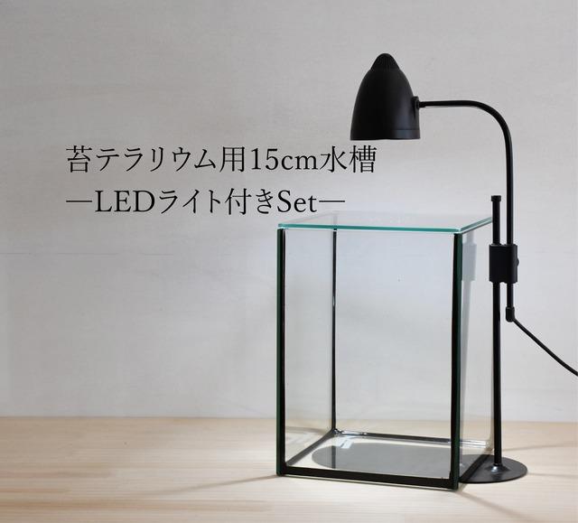 【ガラス容器】 苔テラリウム用 15cmガラス水槽 (150x150xh200mm)◆LEDライト付き