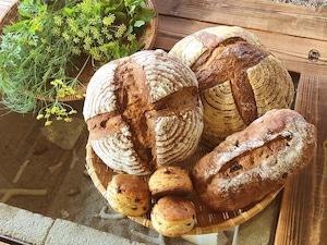 まる屋のハード系パンおまかせセット