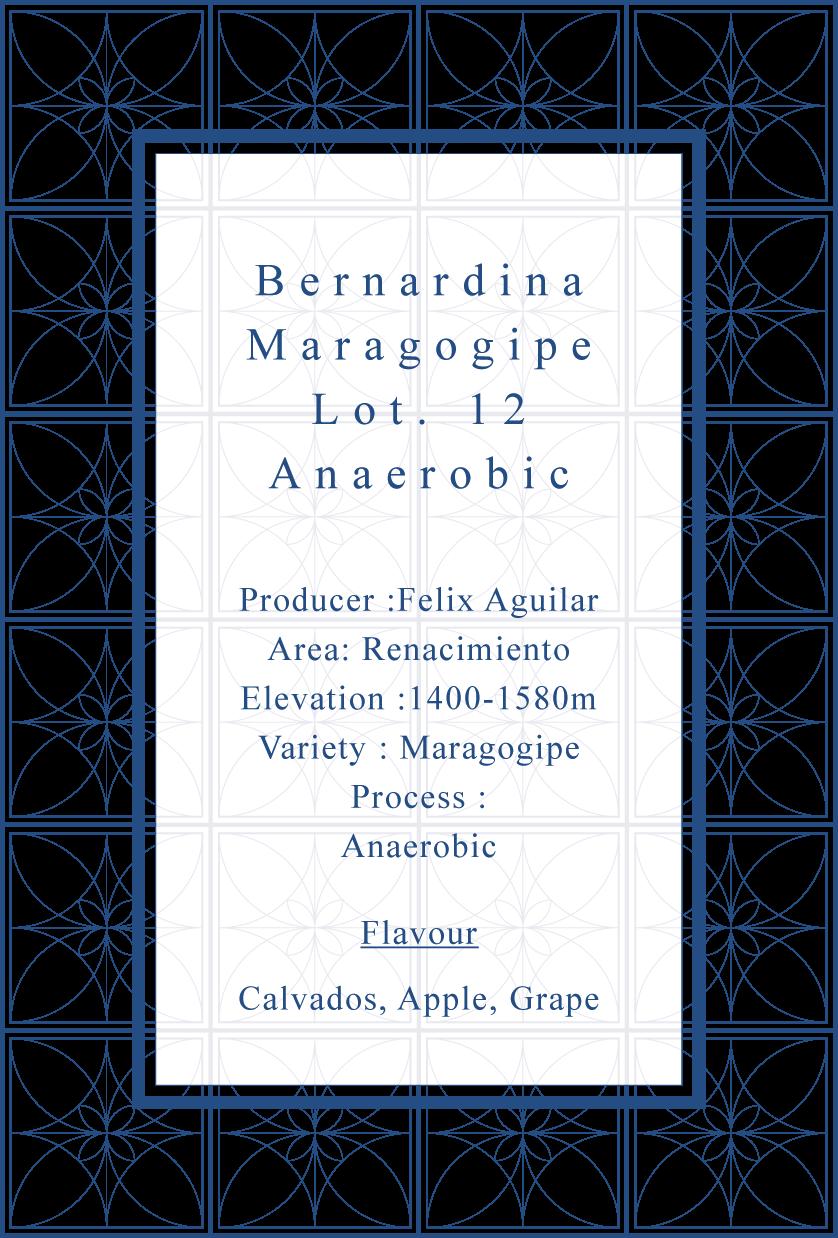 Bernardina lot.12 Maragogype Natural Extended Fermentation