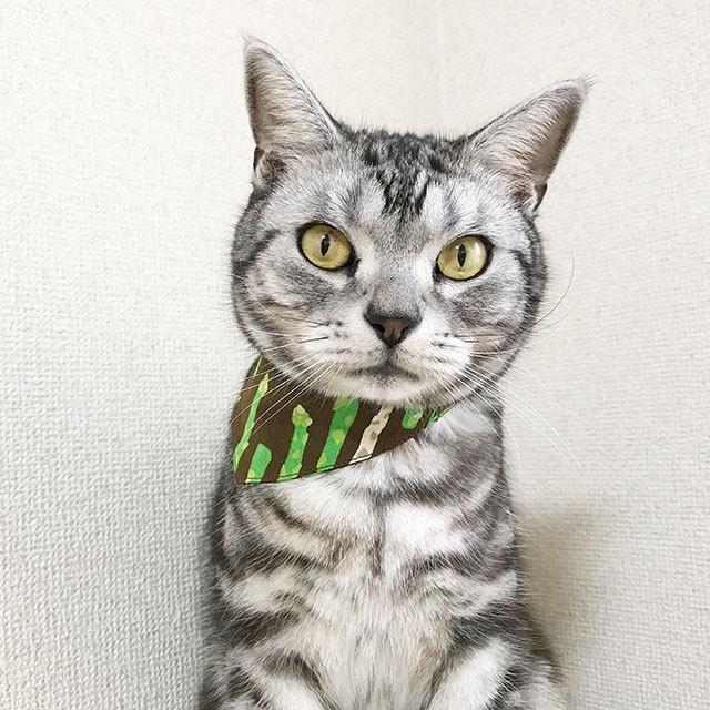 【アスパラ柄】猫用バンダナ風首輪/選べるアジャスター 猫首輪 安全首輪 子猫から成猫