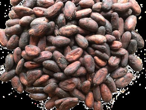 ニカラグア カカオ73%  Bean to Bar チョコレート